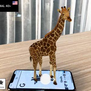 Bộ thẻ học 4D Animal+Space (37 thẻ)